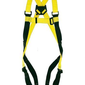 Harness & Lanyard Safety Training